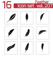 Vector black feather icons set