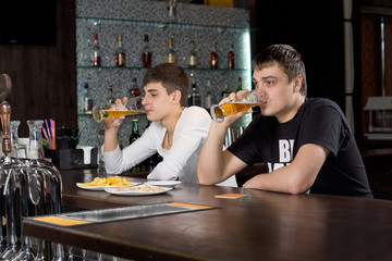 Two men relaxing at the bar drinking beer