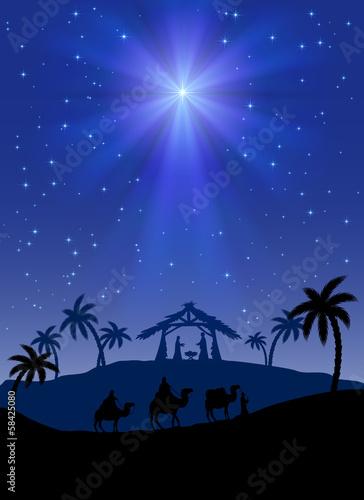 Christmas star - 58425080