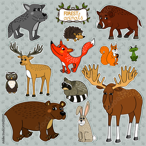 vector animals owl deer fox