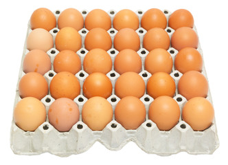 eggs in the package