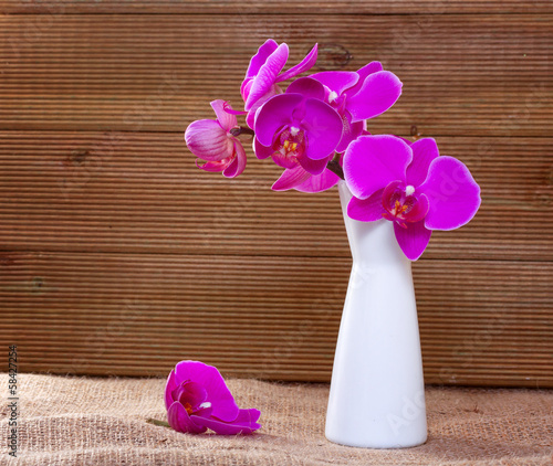 Pink orchid on a rustic background