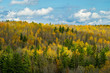 ontonagon river valley, autumn