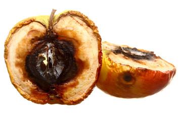 Rotten apple halves isolated. Food waste.