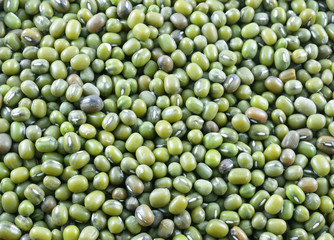 Green bean or mung bean background.