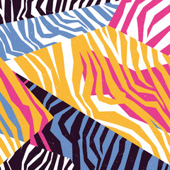 Seamless colorful animal skin texture of zebra