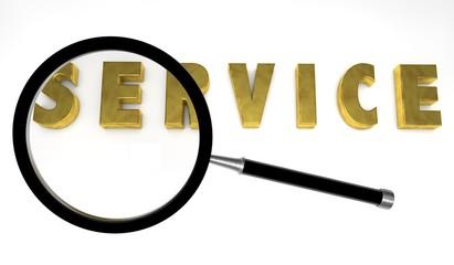 service,search