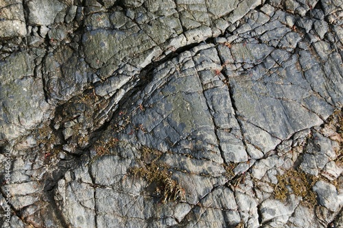 Close up of weathered granite rock on the beach