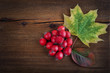 Autumn wooden background with maple leaves and red berry