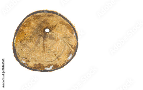 Coconut shell over white background