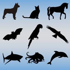 ANIMALES SILUETAS