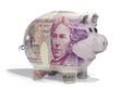 pound note piggy bank
