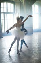Deux jeunes cygnes ballet au cours de danse