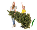 Children are holding a Christmas tree