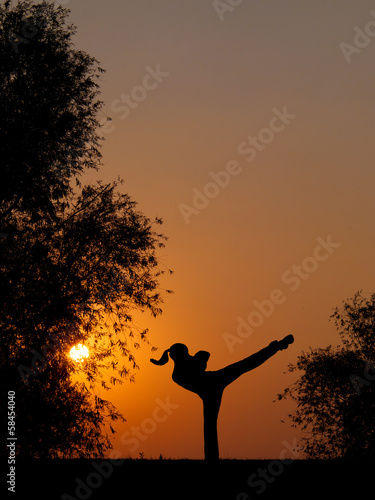 Silhouette of kick boxing girl exercising