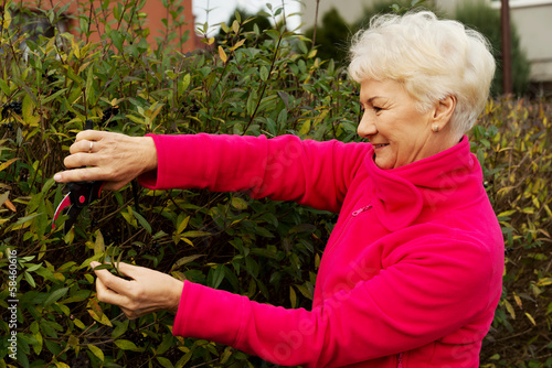 An old lady is cutting bushes.