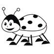 ladybug - coloring book