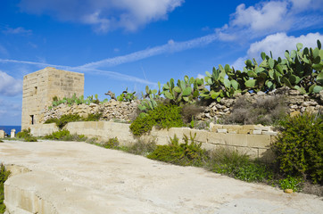 Countryside - Malta