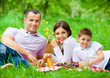 Happy family of three has picnic in park