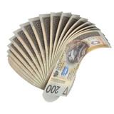 200 PLN fan
