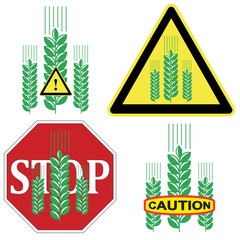 Beware of Wheat Products due to Allergy