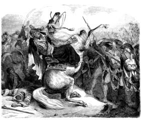 Mamluks vs Napoleonian Army - end 18th century