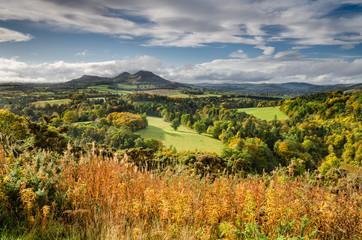 Eildon Hills in autumn