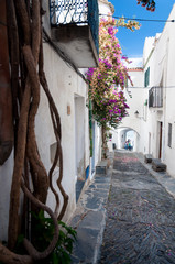 Streets plants and  arcs inside Cadaques town