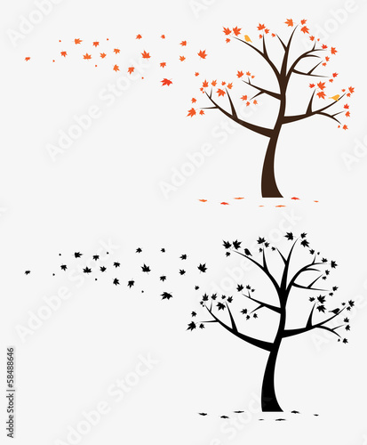 Maple Tree Decal