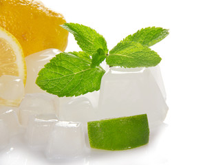 Citrus, mint and cubes of ice