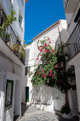 Streets and houses inside Cadaques town