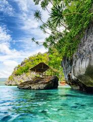 Tropical seashore