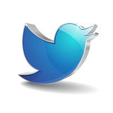 3d Blue Bird Icon