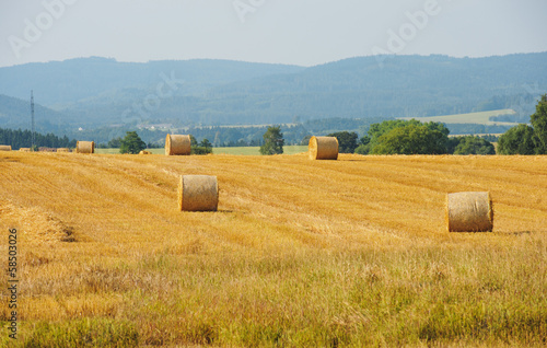 Sheaves in a field