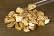 Tweezers holding golden nugget on wooden background