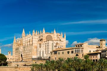 "Kathedrale ""La Seu"" - Palma de Mallorca - 6761"