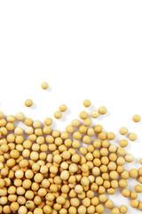 排列的黄豆