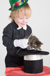 A little boy in hat and with magic wand holding kitten