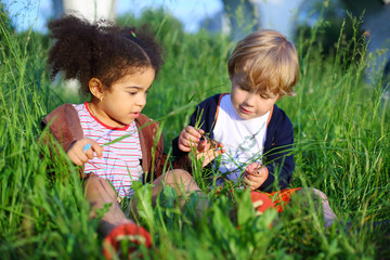 girl and boy sitting in grass and consider blade of grass