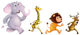 Four wild animals running