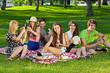 Obrazy na płótnie, fototapety, zdjęcia, fotoobrazy drukowane : College students enjoying a picnic in the park.