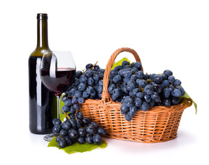 Red wine and ripe blue grape in basket
