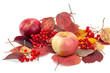 Apples and viburnum on autumn leaves