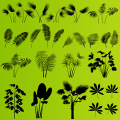 Tropical exotic jungle grass and plants background vector