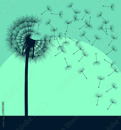 Blow dandelion vector vintage background concept