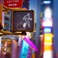 New York Walk Sign