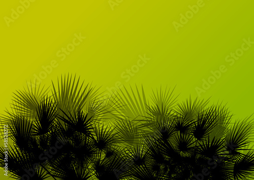 Palm tree silhouettes wild nature landscape background illustrat