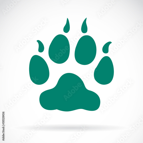 Illustration animals paws print