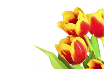 Букет из красно жёлтых тюльпанов.