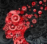Human Brain Injury